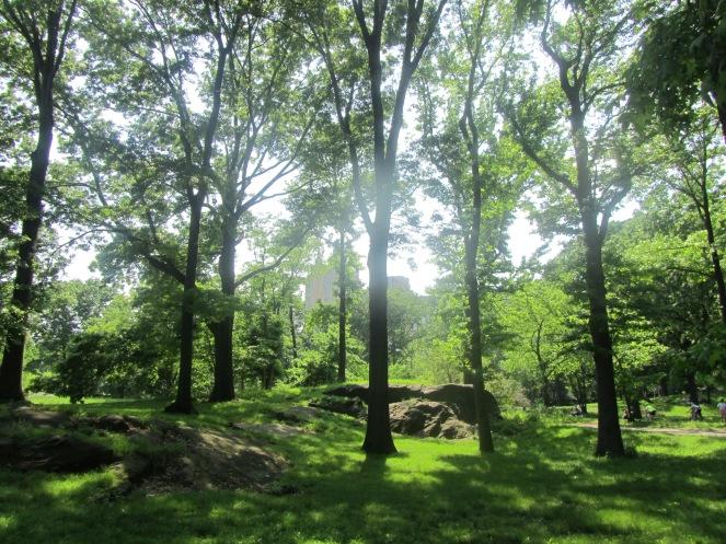 harlem park